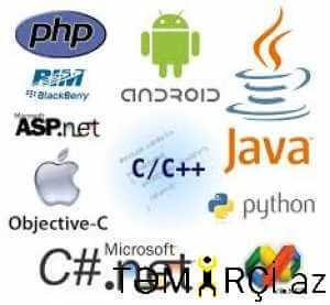 Web Programçı Web Saytlarin Yaradilmasi_2